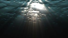 Ondas de oceano subaquáticas video estoque
