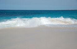 Ondas de quebra na praia Imagens de Stock Royalty Free