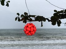 Ondas de vento do mar Foto de Stock Royalty Free