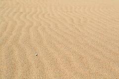 Ondas de viento en la arena en la playa Fotos de archivo