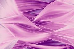 Ondas del color de rosa Fotografía de archivo