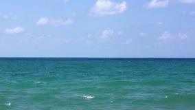 Ondas del mar almacen de metraje de vídeo