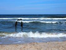 Ondas del mar agitado de la playa, Polonia imagen de archivo
