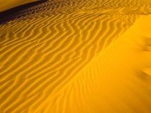 Ondas douradas da areia Imagem de Stock