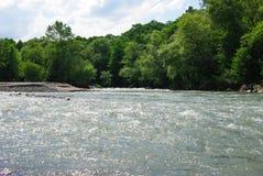 Ondas em um rio da montanha no verão Imagem de Stock