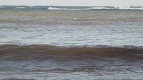 Ondas en el agua tropical del océano metrajes