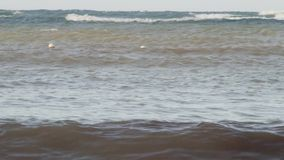 Ondas en el agua tropical del océano almacen de video