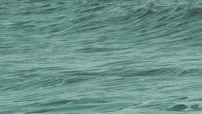 Ondas en el mar almacen de video