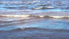 Ondas en el mar Báltico cerca de la orilla almacen de video