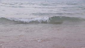 Ondas en el mar Ondas del mar Pequeña playa de la arena de las ondas Por la tarde en la playa Pequeñas ondas del mar y playa aren almacen de video