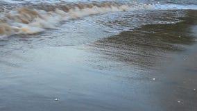 Ondas en la playa metrajes