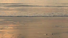 Ondas en la playa almacen de video