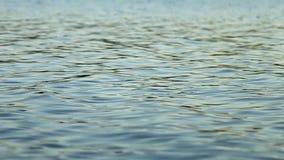 Ondas en la superficie del agua almacen de video