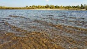 Ondas funcionadas con en el banco arenoso del río, día soleado metrajes
