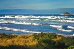 Ondas grandes en la costa de Nueva Zelanda Foto de archivo