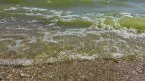 Ondas litorais do mar de Azov video estoque