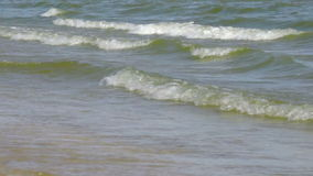 Ondas litorais do mar de Azov vídeos de arquivo