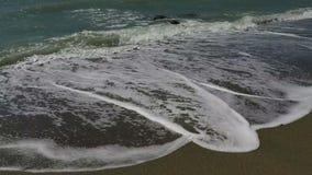 Ondas na areia vídeos de arquivo