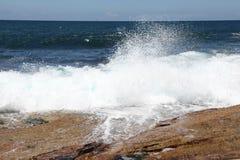 Ondas na praia Austrália de Dee Why Foto de Stock Royalty Free