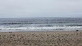 Ondas na praia da areia com céu nublado Califórnia do norte vídeos de arquivo