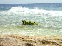 Ondas na praia selvagem Fotos de Stock Royalty Free
