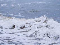 Ondas no litoral imagem de stock