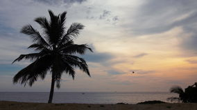 Ondas oceánicas que se rompen sobre los acantilados/las rocas en el clip tropical 2 de Asia (Tailandia) 4k UHD metrajes