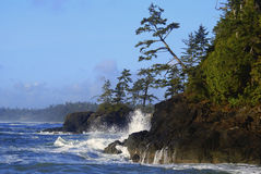 Ondas que machacan en la costa de los países de la costa del Pacífico Imagen de archivo