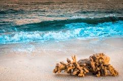 Ondas que ruedan abajo la orilla Foto de archivo libre de regalías