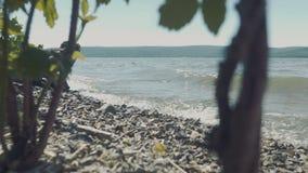 ondas que se estrellan en una playa rocosa almacen de metraje de vídeo