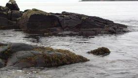 Ondas que traslapan para arriba contra rocas en una playa arenosa metrajes