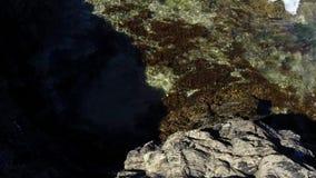 Ondas que traslapan sobre roca con alga marina en agua de mar clara y espacio negativo almacen de metraje de vídeo