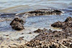 Ondas, rocas y algas del mar tirreno, fondo abstracto y paisaje Fotografía de archivo