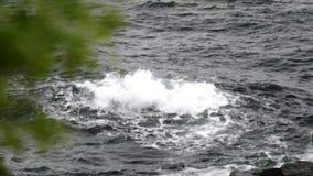 Ondas salvajes del mar almacen de video