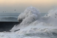 Ondas tormentosos grandes Foto de Stock Royalty Free