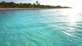 Ondas transparentes da costa branca das caraíbas da areia vídeos de arquivo