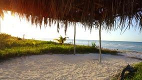 Ondas transparentes de la orilla blanca del Caribe de la arena almacen de video