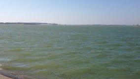 Ondas y viento en un lago almacen de video