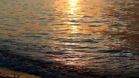 Onde alla riva del lago Baikal video d archivio
