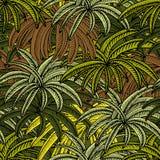 Onde as palmeiras estão ilustração do vetor