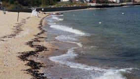 Onde che si schiantano al litorale (1 di 2) video d archivio