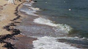 Onde che si schiantano al litorale (2 di 2) archivi video