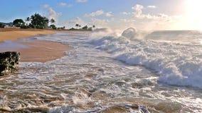 Onde che si schiantano sulla spiaggia sabbiosa con una gente udidentified su Oahu, Hawai archivi video