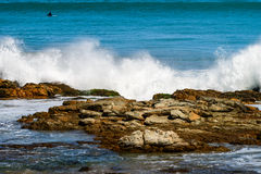 Onde che si schiantano sulle rocce costiere Fotografie Stock Libere da Diritti