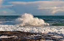 Onde de mer photographie stock libre de droits