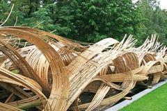 Onde del bambù Fotografia Stock