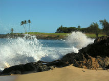 Onde del Hawaiian Immagine Stock Libera da Diritti