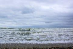 Onde del Mar Nero durante la tempesta immagine stock libera da diritti