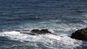 Onde del mare del Mar Nero stock footage
