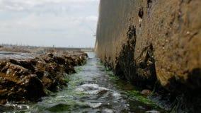 Onde del mare nel pilastro concreto di pietra con le alghe sui precedenti di un pescatore sfuocato 4K video 4K stock footage